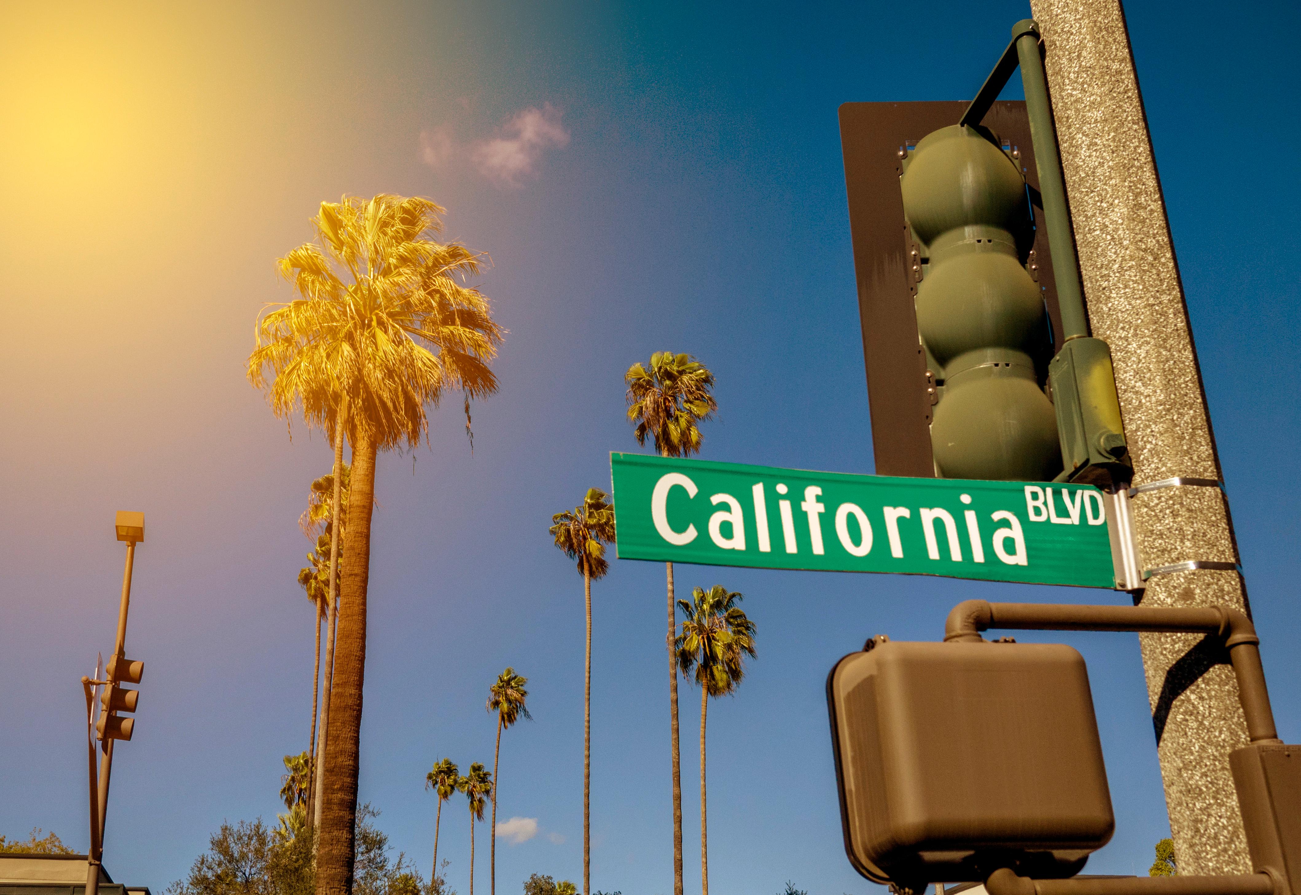 calle_en_california_con_palmeras_sol_cielo_azul_semaforo